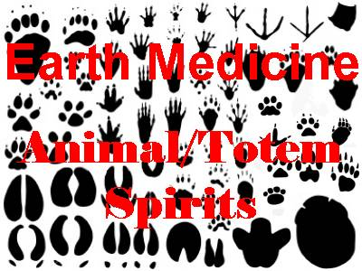 Earth Medicine - Animal Spirits Class